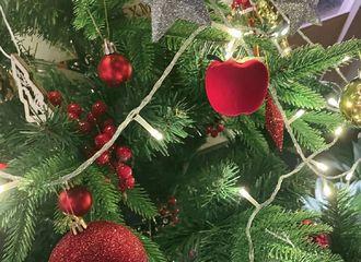 [新闻]201225 林彦俊更新绿洲分享「彦色」 我们的漂亮小橘圣诞节快乐