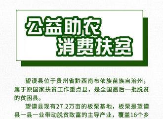 [新闻]210117 肖战粉丝公益倡导Day16公开 馋嘴小零食不如尝尝望谟县板栗