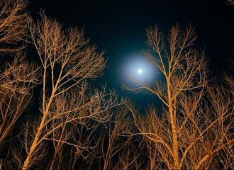 [新闻]210408 绿洲知名风景博主王源昨夜上线 夜色罩四周,明月寄相思