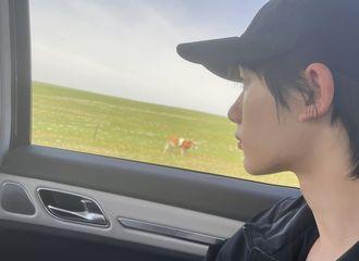 [新闻]210613 丁程鑫连发两条微博分享今日明信片 草原美景和小丁的帅气相得益彰!
