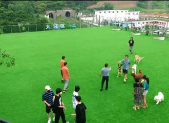 [分享]210618 你们时代少年团的偶遇都充满喜剧效果 宋亚轩刘耀文严浩翔被偶遇公园(看)遛狗